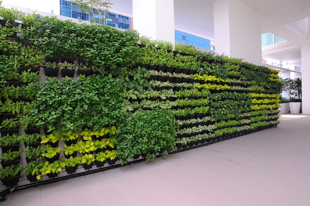 Vgp Green Walls Femox Gmbh
